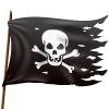 pirate-flag-100x100