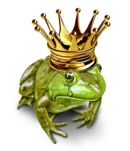 Sad Frog